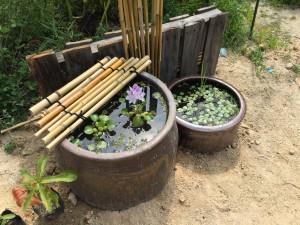 森口先生が新宿せいがに来られる前の園で取り組まれた環境の数々